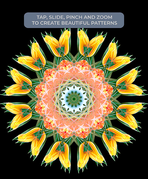 Moodlapse : Tap, slide, pinch and zoom to create beautiful floral patterns